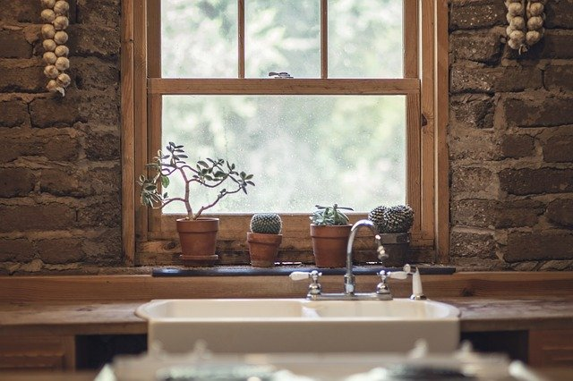 A vase of flowers sits in front of a window